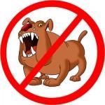 Как отпугивать собак