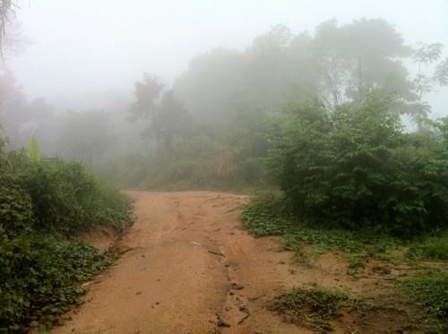 В горах Тайланда