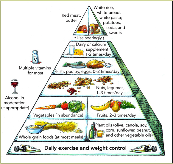 школа здорового питания и похудения