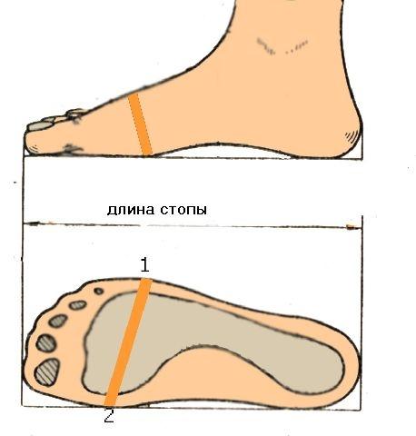Как определить свой размер кроссовок