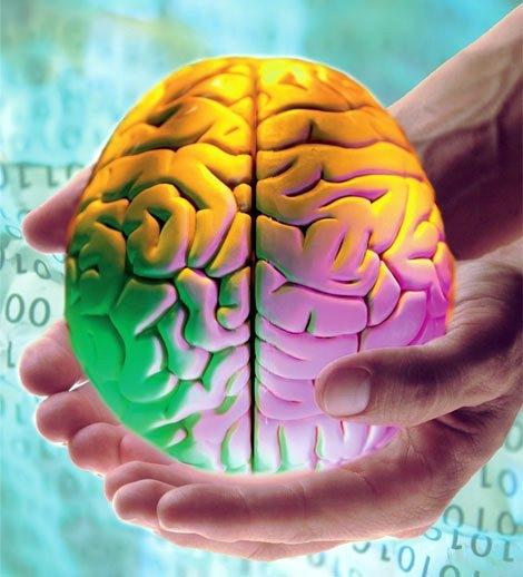 Чем полезен бег для мозга