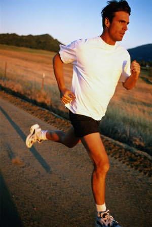 Энергообмен в мышцах (Вырабатывание энергии)
